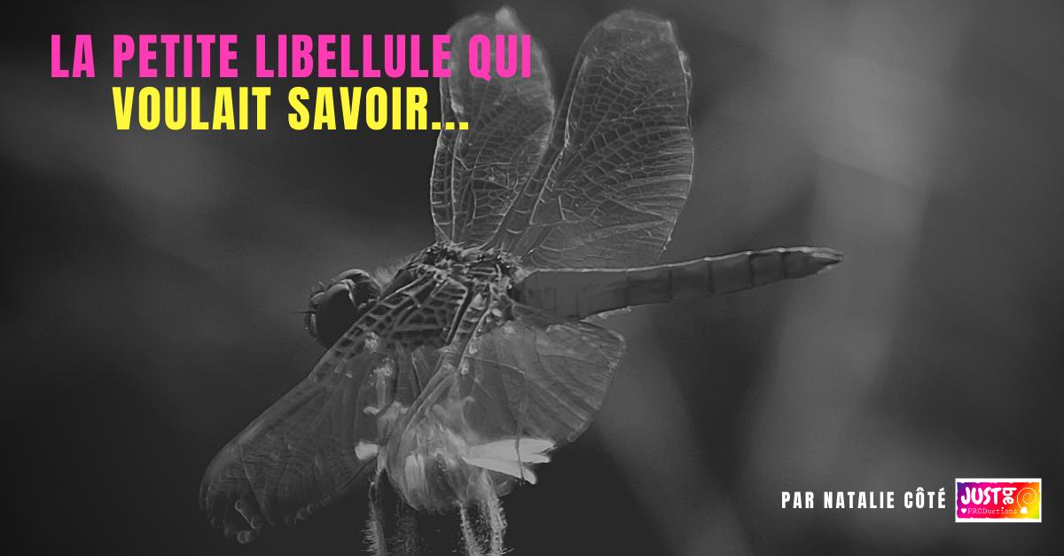 La petite libellule qui voulait savoir !